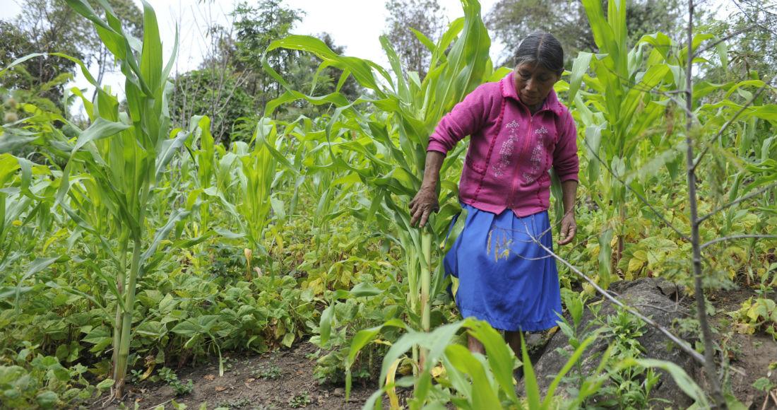 mujeres-rurales-pobreza