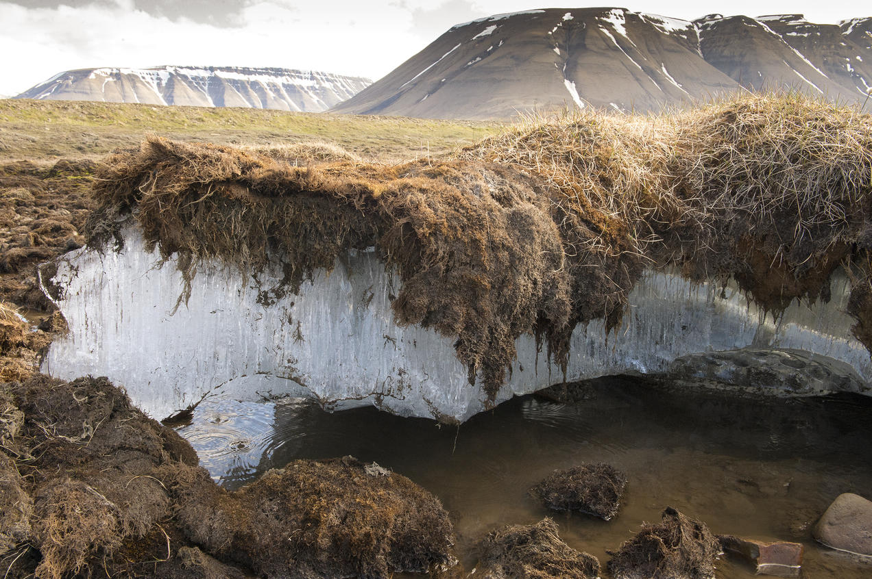 Permafrost melting in the arctic region of Svalbard, Norway.