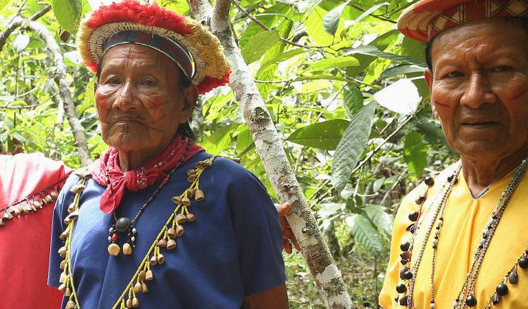 Miembros de la nacionalidad siekopai en territorio ancestral siekopai, Amazonía ecuatoriana. Foto Amazon Frontlines y Alianza Ceibo.