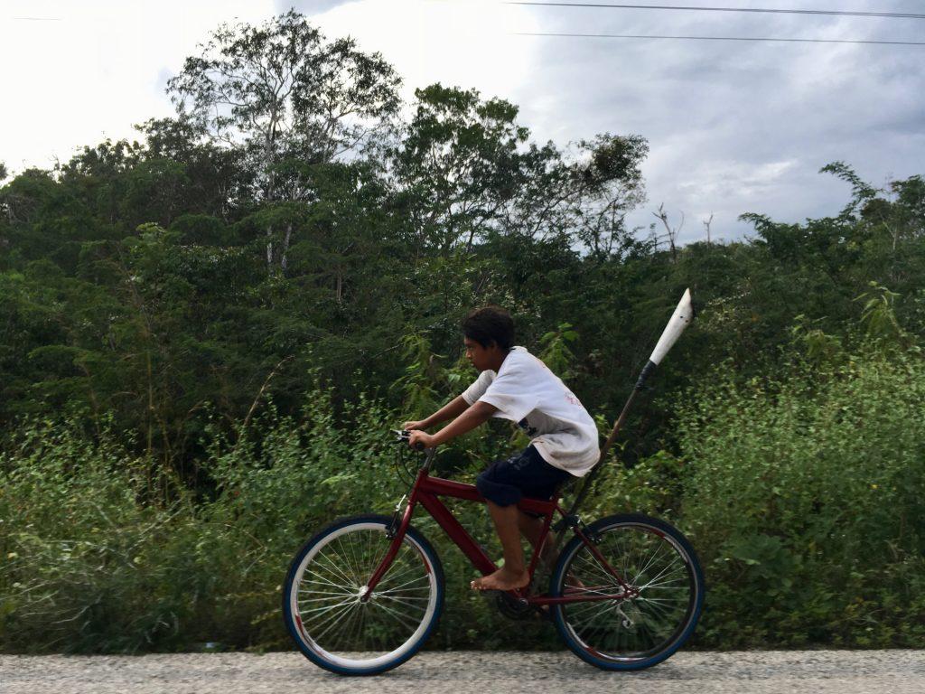 Caminos en la zona maya de Campeche. Foto: Thelma Gómez Durán