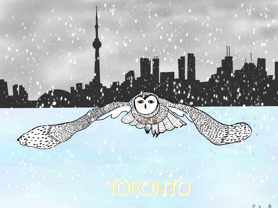 Ilustración de un búho nivel en Toronto