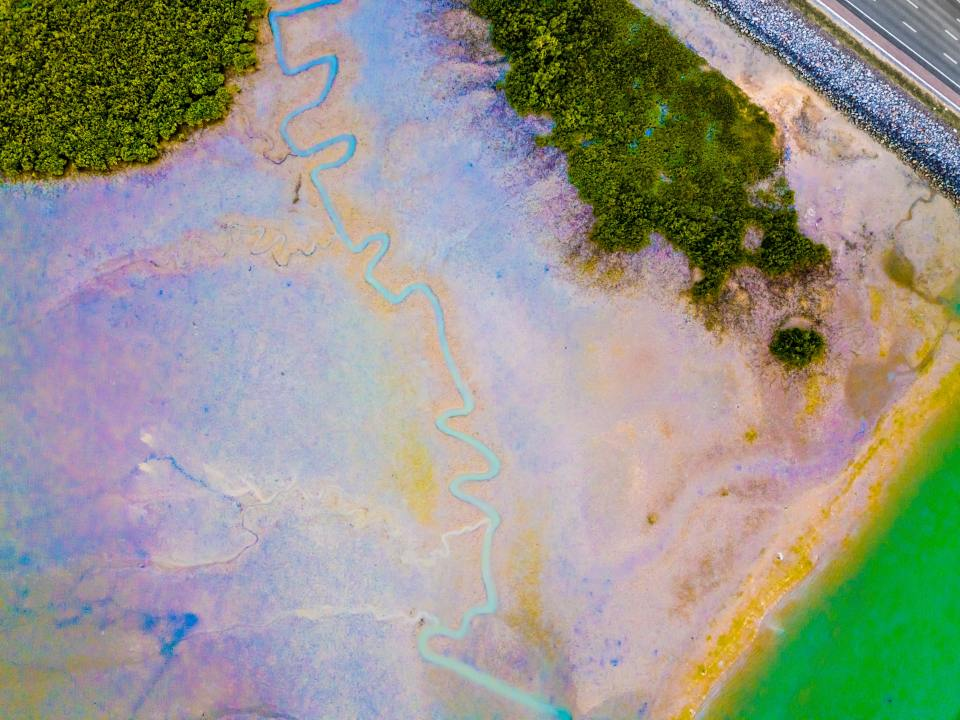 Imagen representando el derrame de un oleoducto en un humedal