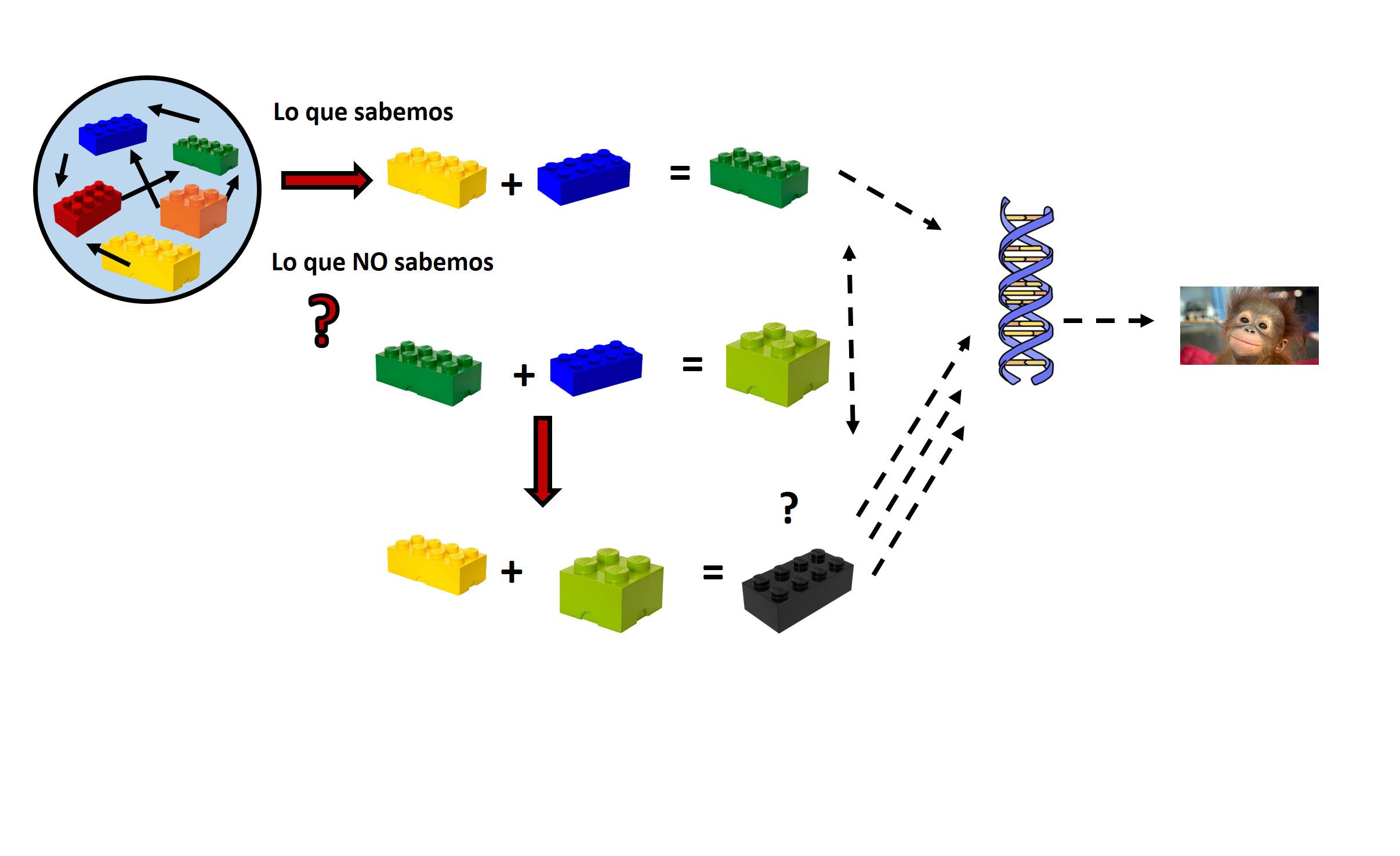 La química de sistemas implica considerar las diferentes interacciones en un sistema así como sus propiedades emergentes.