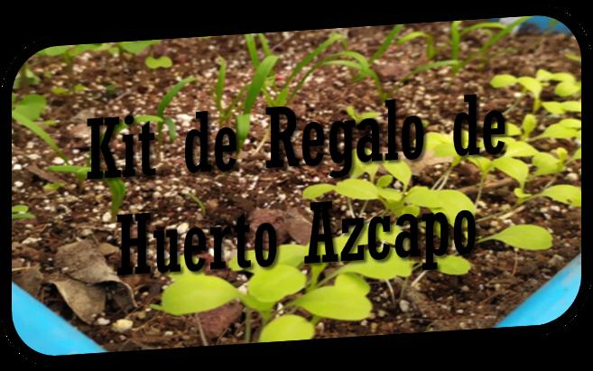 Kit de Regalo Huerto Azcapo