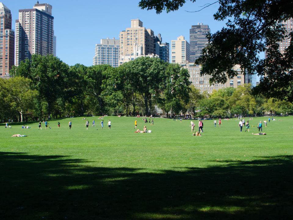 Personas disfrutando un día soleado en Central Park, Nueva York