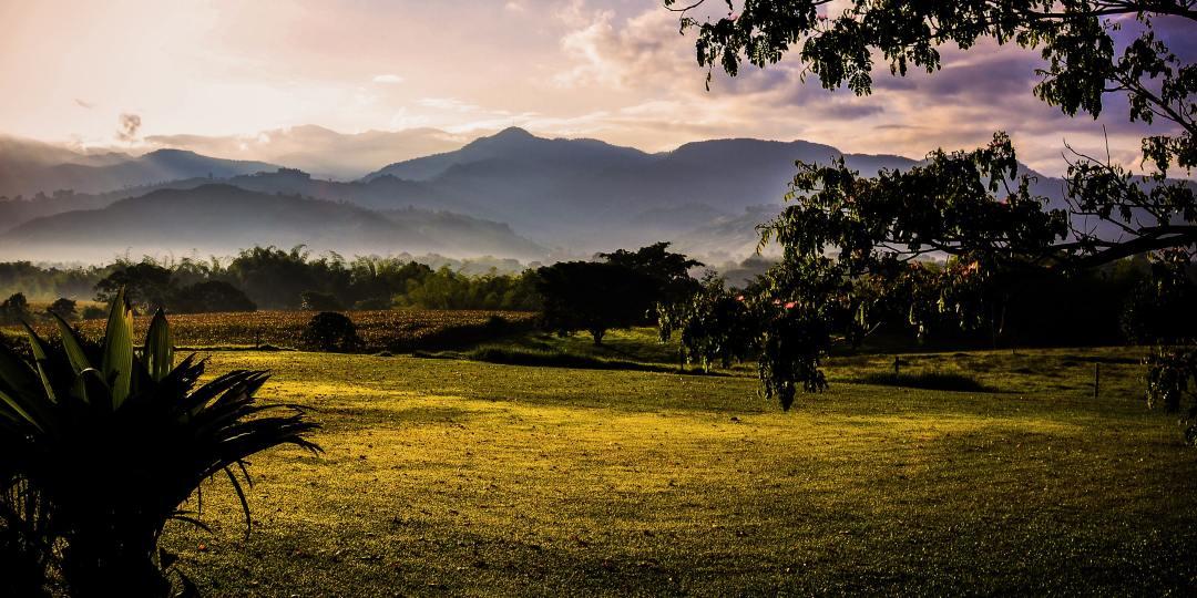 Muchos ecosistemas a lo largo de América Latina no están representados por las redes de observatorios ambientales